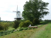 Mühle in Veere